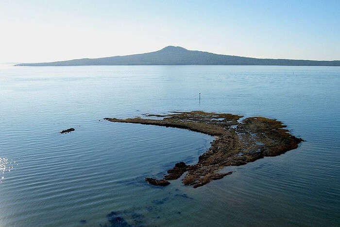 Best time to visit Rangitoto Island