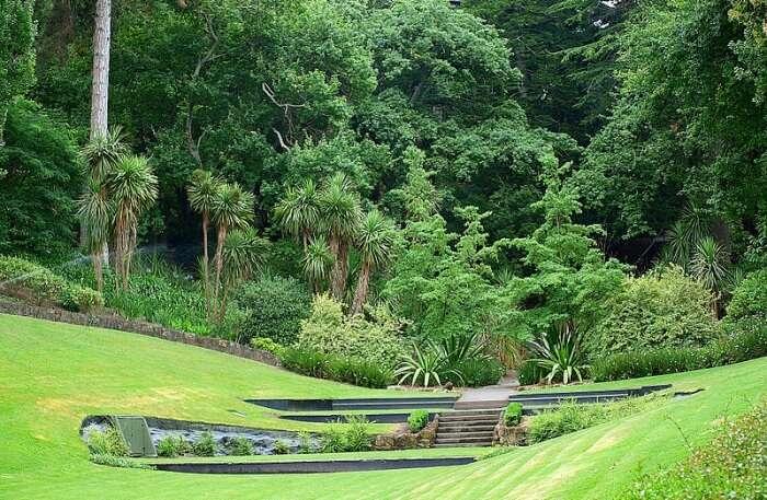 Botanical Gardens View