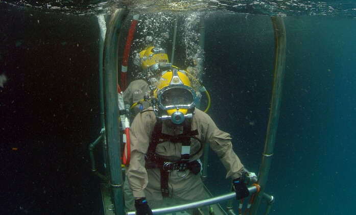 Cage snorkelling