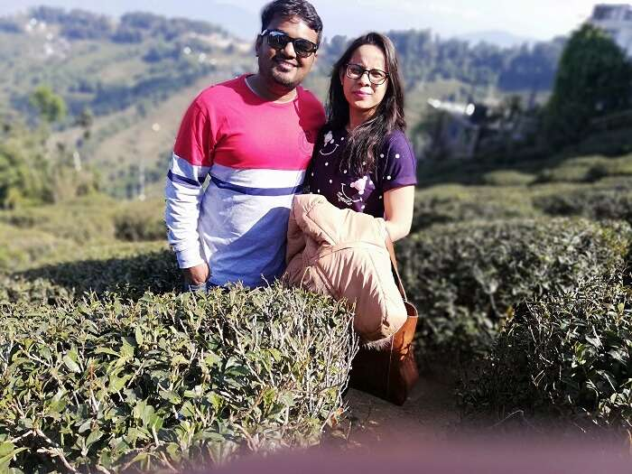 visiting to the tea gardens