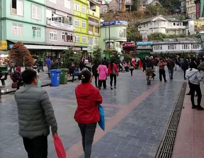 reached to Darjeeling