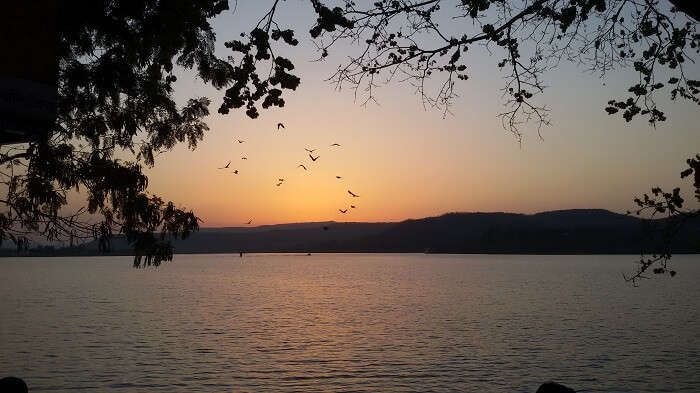 Dams in Pune