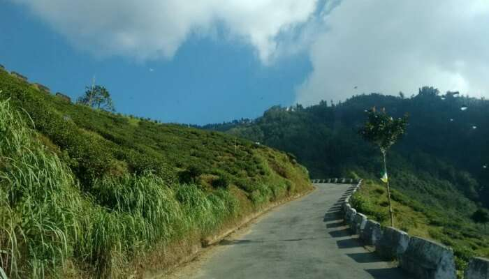 road to Darjeeling