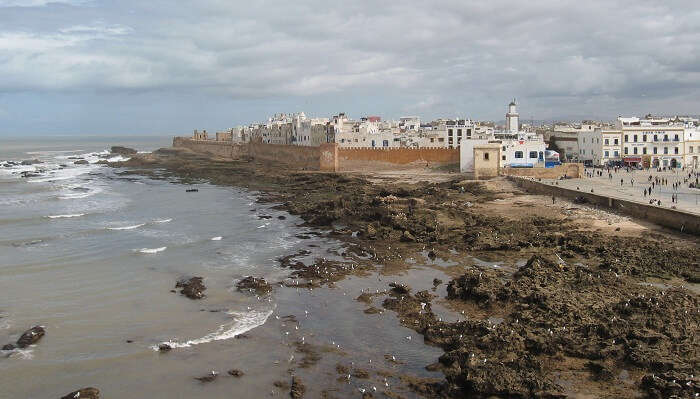 Tide Pools Of Essaouira