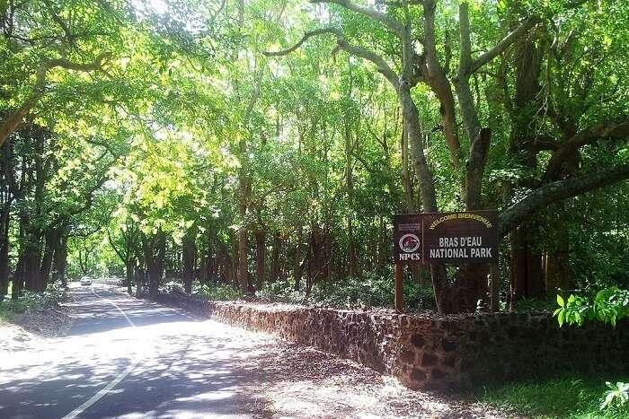Bras D'Eau National Park