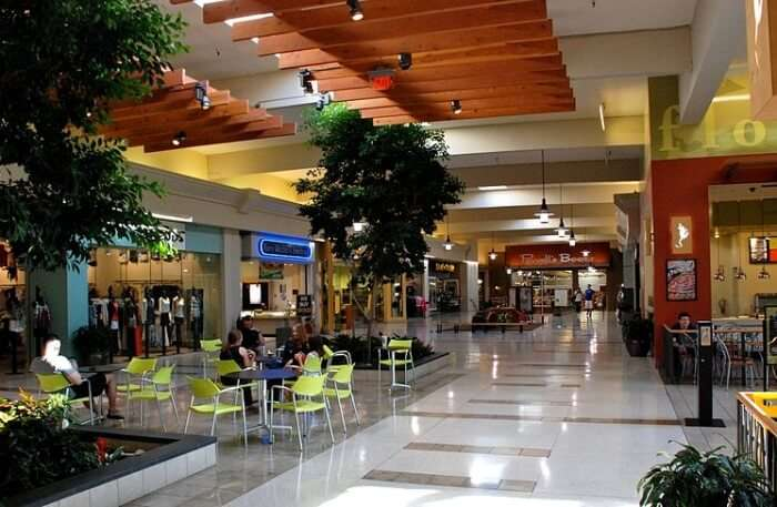 Cedar Mall In Kenya