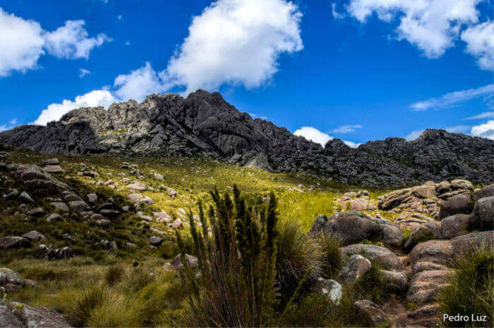 Itatiaia-National-Park_19th oct