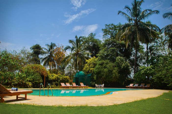 Kairali - The Ayurvedic Health Resort, Kerala (1)