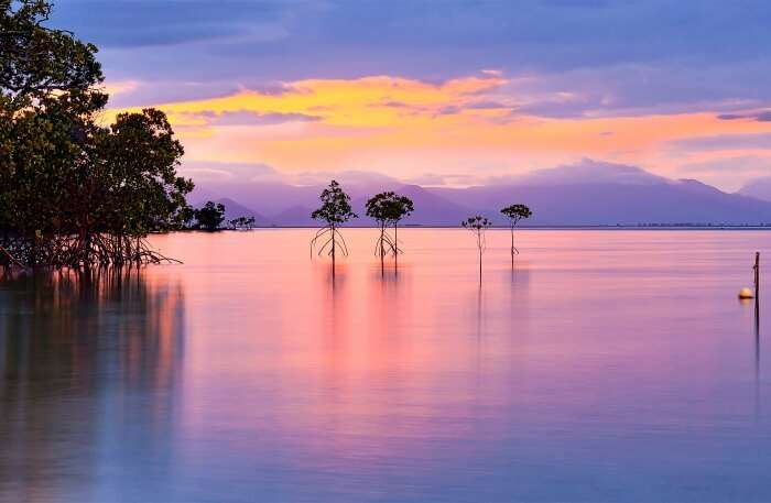 Orpheus Island In Queensland