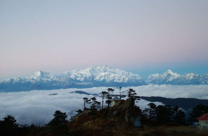 Sandakphu Trek In Sikkim