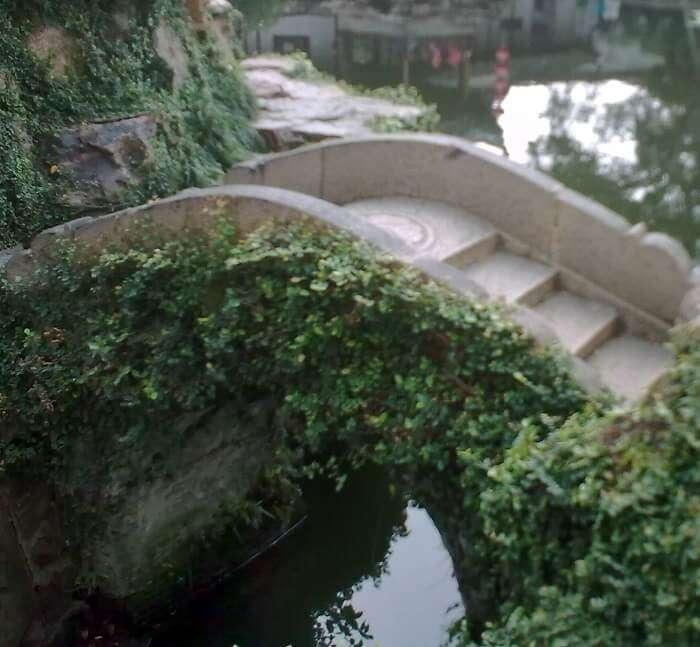 Gardens in Saputara