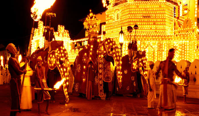 The Processions