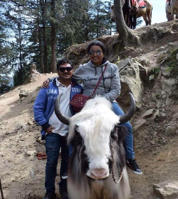 horse riding in shimla
