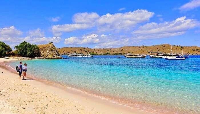 pink beach kodomo