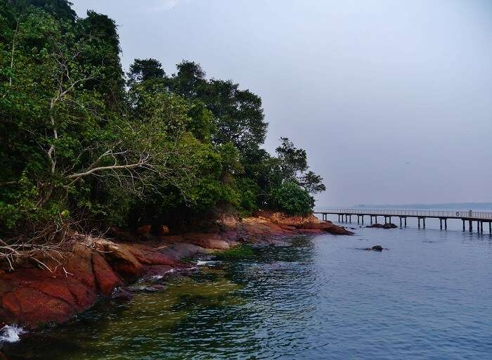 view of ubin island in evening