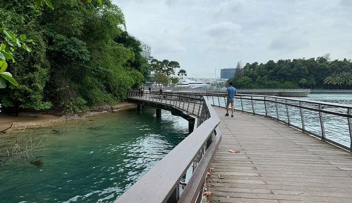 Bukit Chermin Boardwalk