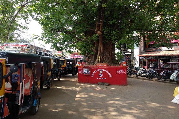 Hampankatta Market
