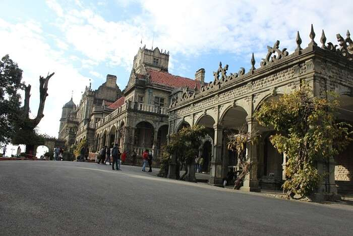 Highlights-Of-Shimla-Summer-Festival