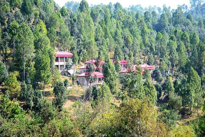 Himalayan Eco Lodges Majkhali Woods
