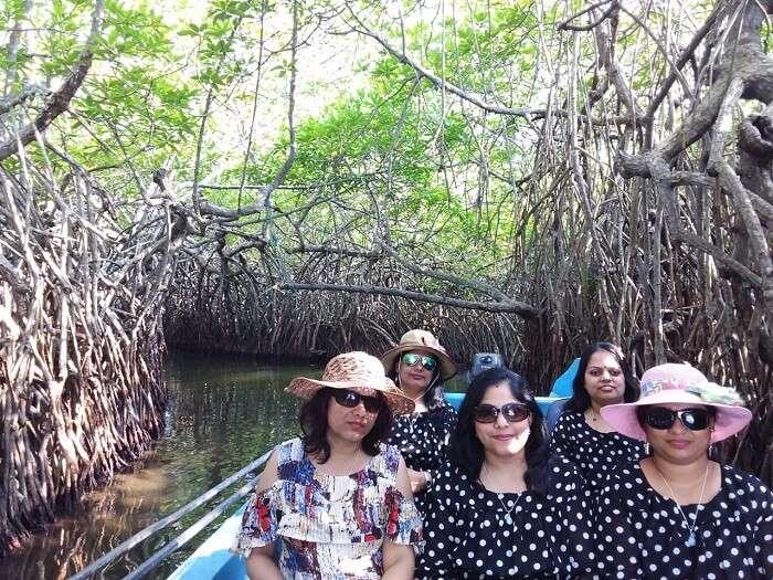 Bentota River on a boat safari