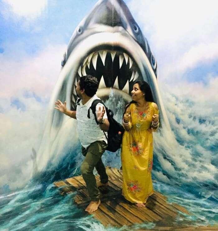 shark coming