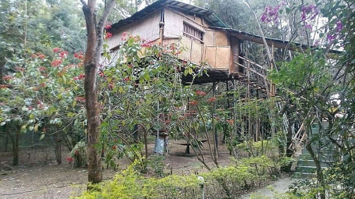 Wild Canopy Nature Reserve in Mudumalai