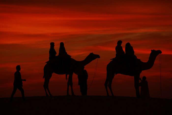 camel safari rajasthan1
