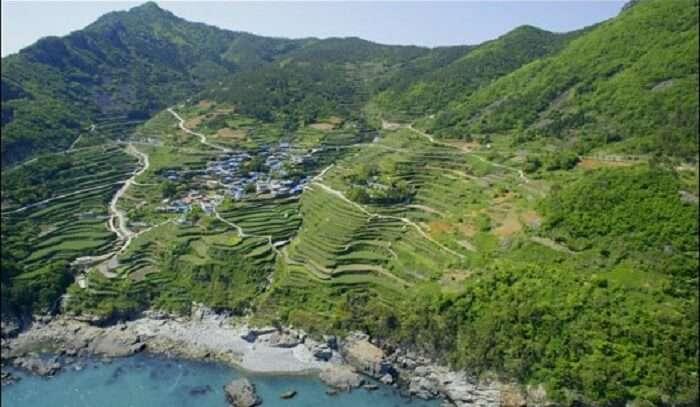 darangee  village