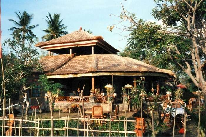 Amed Cafe