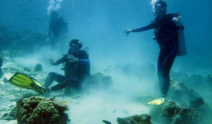 Best Time For Scuba Diving In Kochi