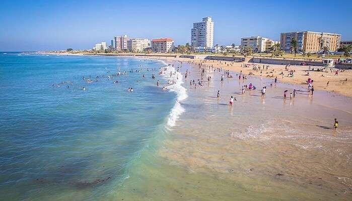 Best Time To Visit Port Elizabeth