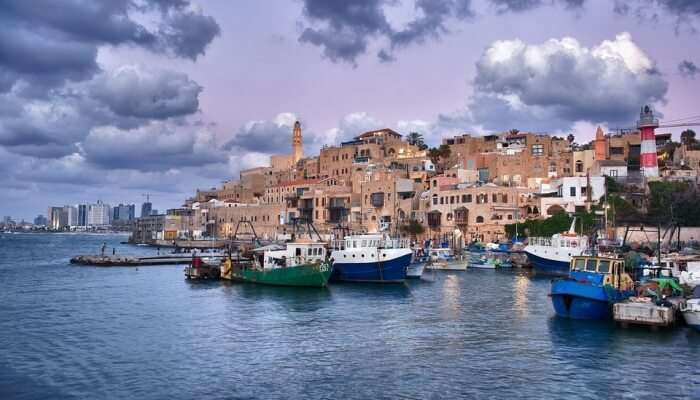 Jaffa city View