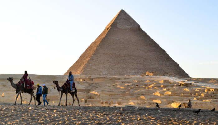 Giza cover