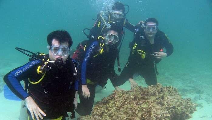 Inter Dive Adventure Sports Centre