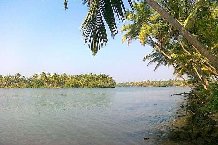 Kavvayi Island