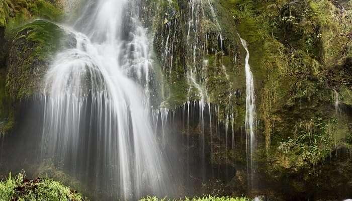 Suruli Falls In Thekkady