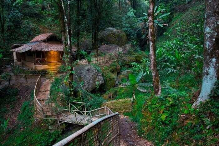 Tieedi Earthy Dwelling & Herb Garden Dwelling