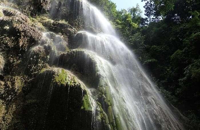 Tumalog Falls View