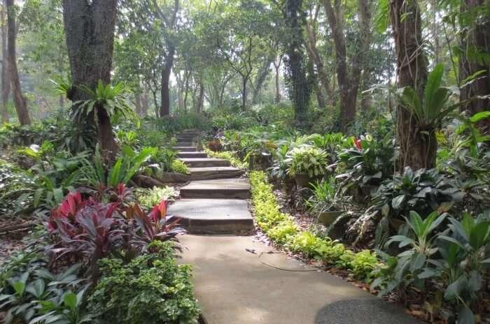 Visit La Mesa Eco Park