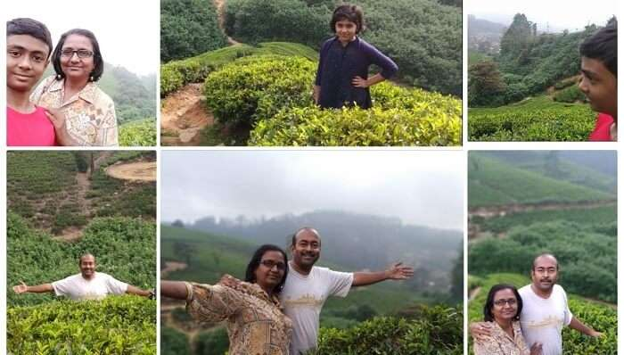 nuwara eliya collage