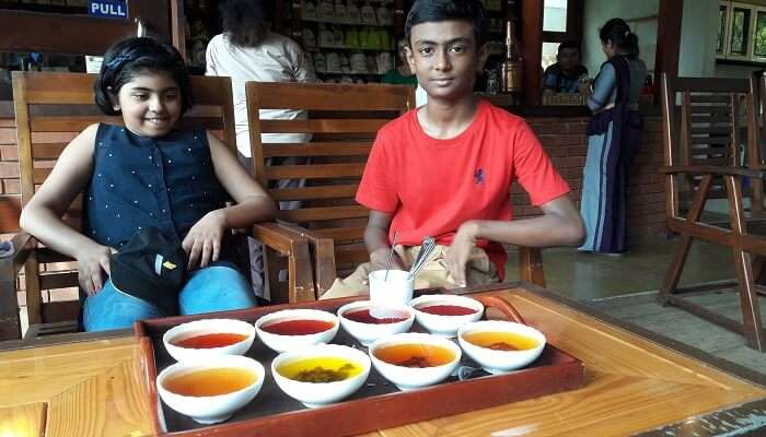 tea factory tea tasting