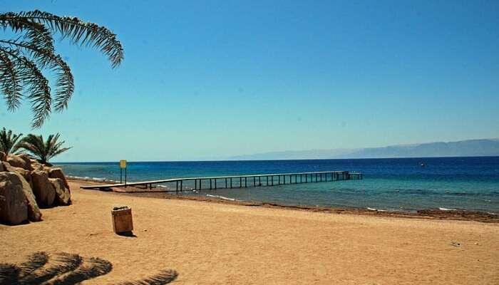 Aqaba Marine Park View