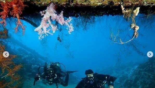 Arab Divers Aqaba