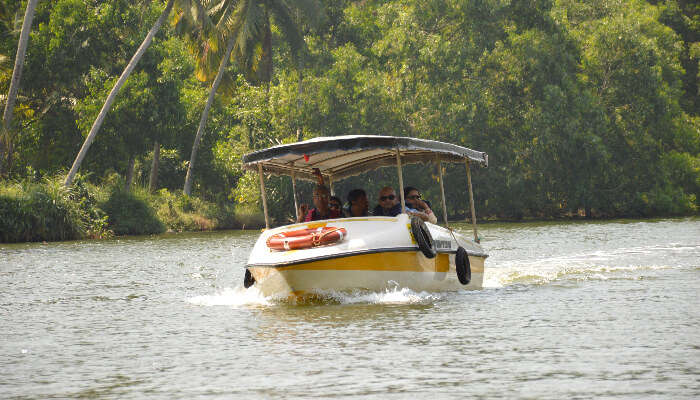 Backwater boat tour in Kerala