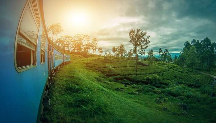 Best Time To Go For Sri Lanka Group Tours