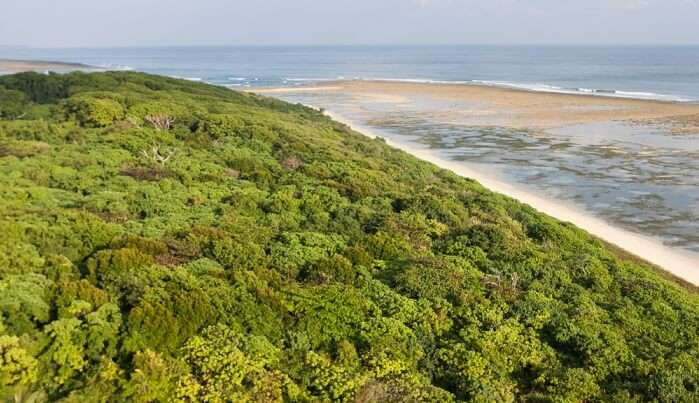 Best Time To Visit Little Andaman Island