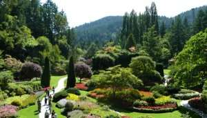 Butchart Garden in Canada