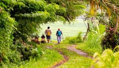 two people walking Jatiluwih fields