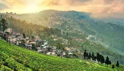 Darjeeling Festival
