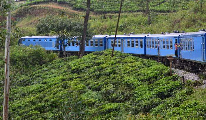 scenic and refreshing toy train ride